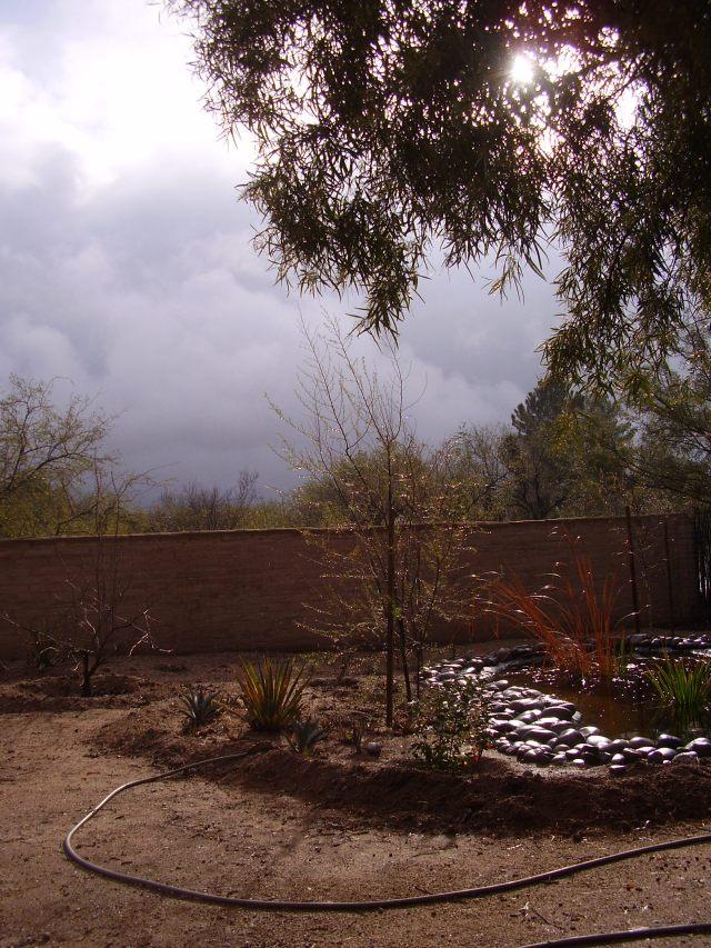 january rains