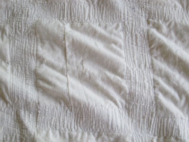free motion quilting (7)