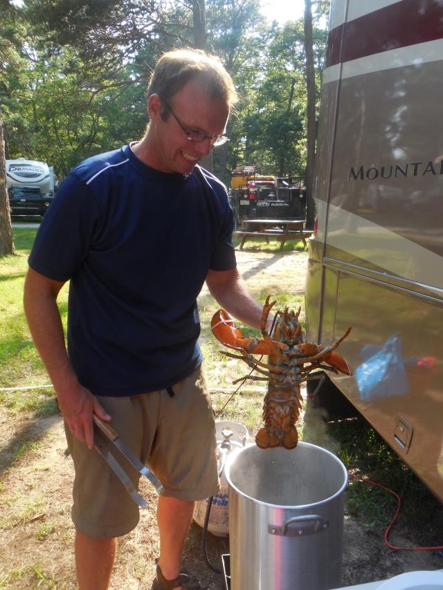 lobster (1)