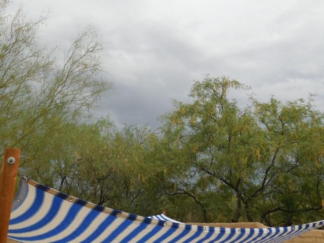 monsoon (12)