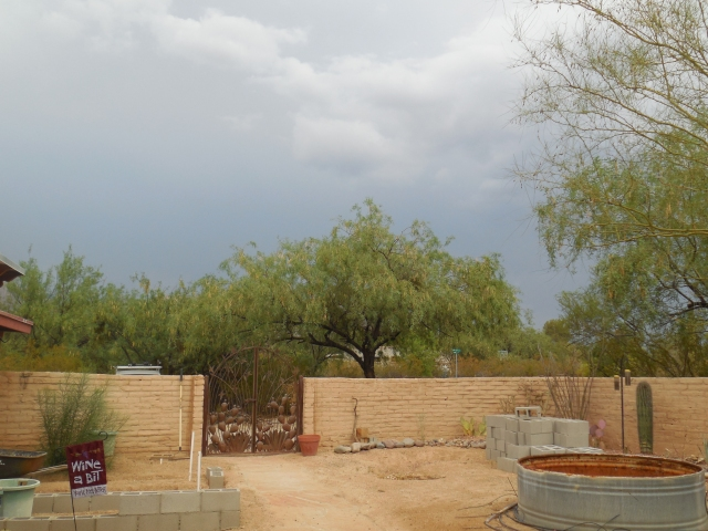 monsoon (4)