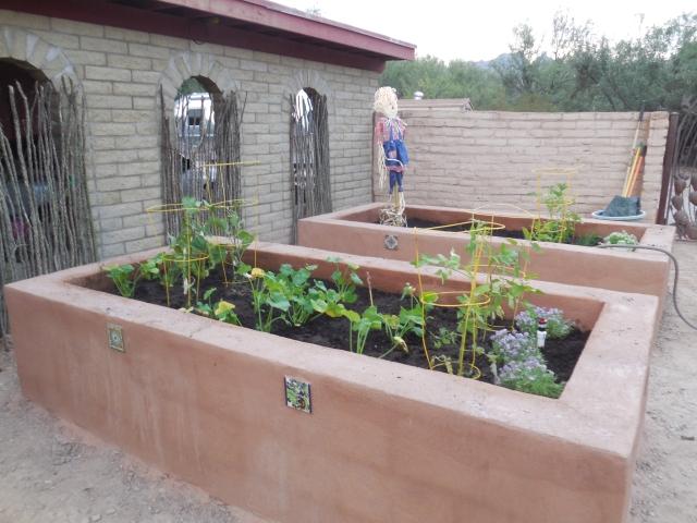 planted garden (1)