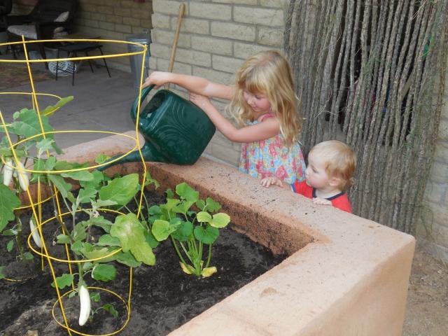 planted garden (4)