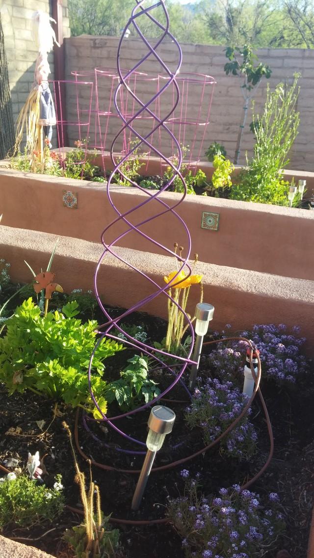 spring garden (13)