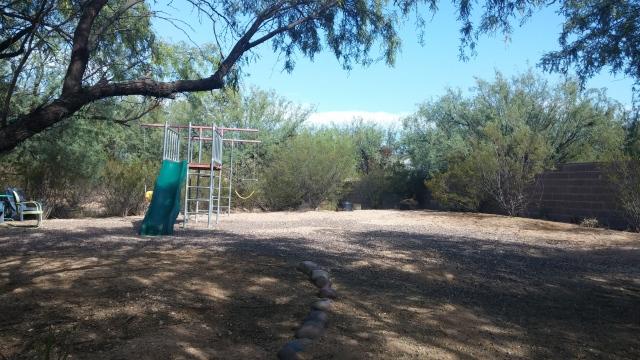 backyard (1)