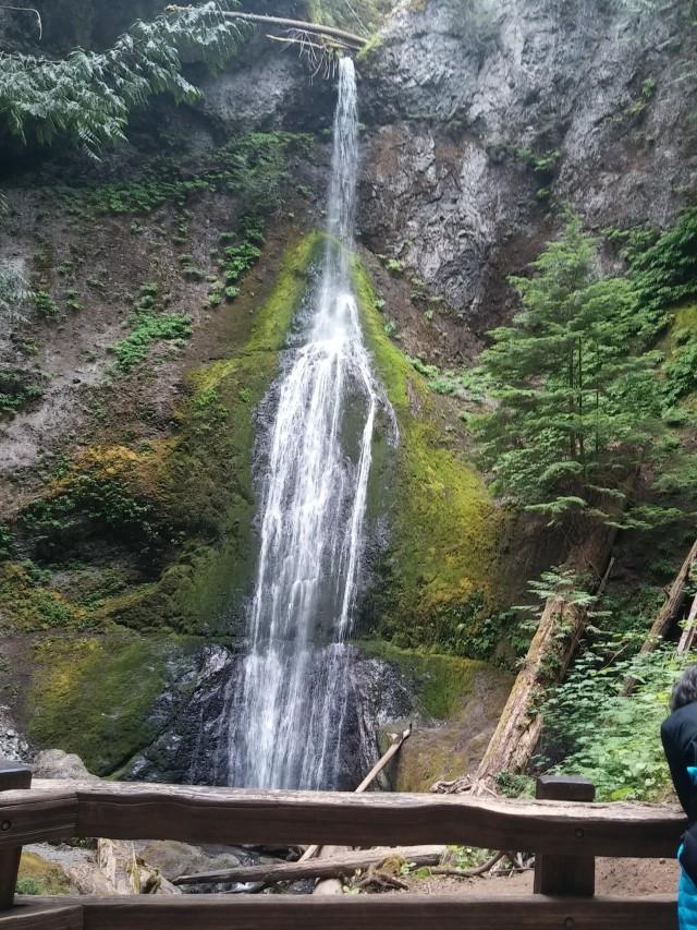 marymoor falls (3)