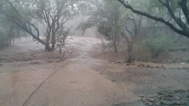 monsoon (5)