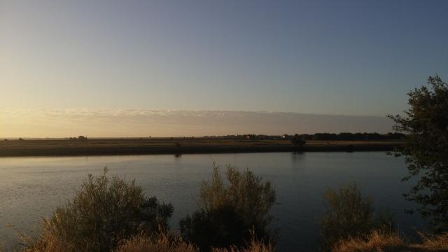 sunrise sacramento river (2)