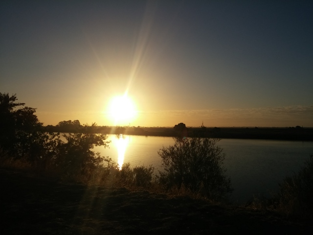 sunrise sacramento river (3)