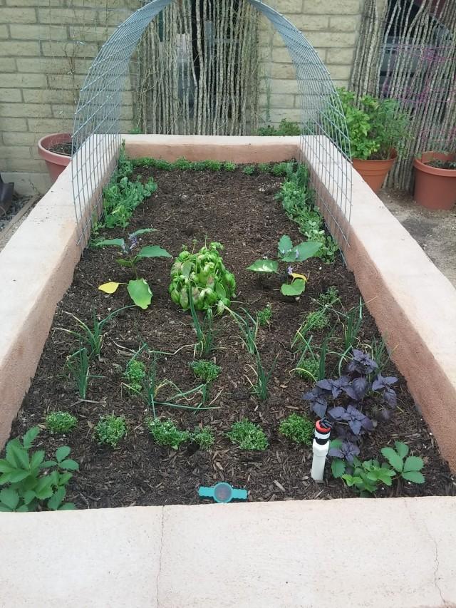 sept garden